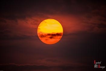 Rising Sun, Oct 2017