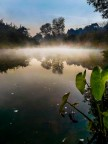 Morning Landscape on River Sona, Odisha, 2016