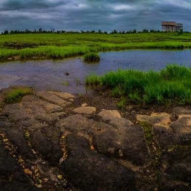 Landscape at Mihan, Nagpur, 2018