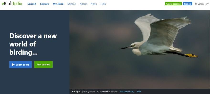 ebird cover 31012018